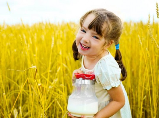 cow's milk for toddlers